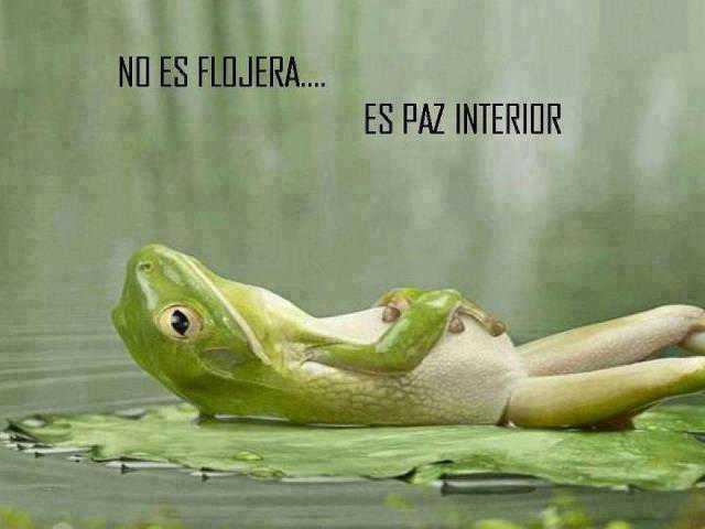 Edizzz_No-es-flojera-es-paz-interior